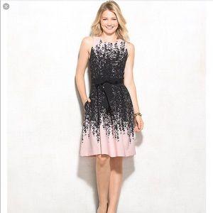 Luxe by Carmen Marc VALVO Dress